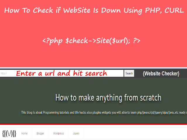 Check If Website Is Down Using PHP And Curl