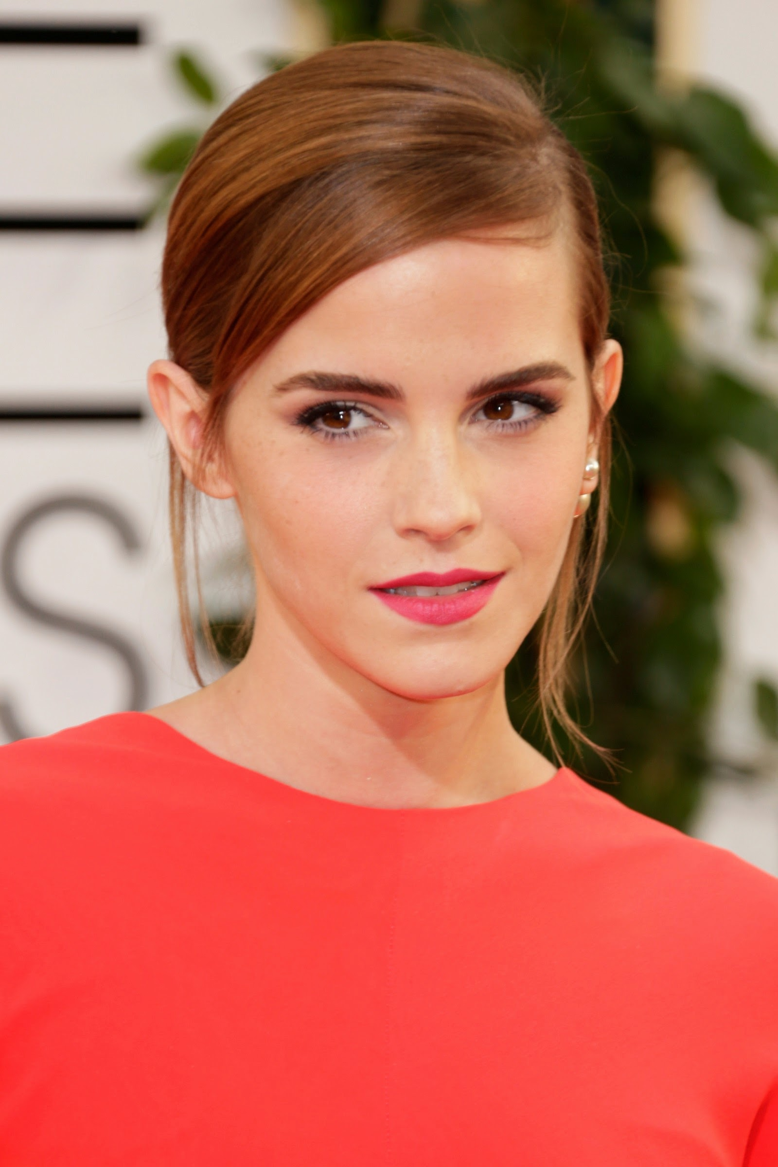 Was Emma Watson Too Attractive To Play Hermione? | TheThings