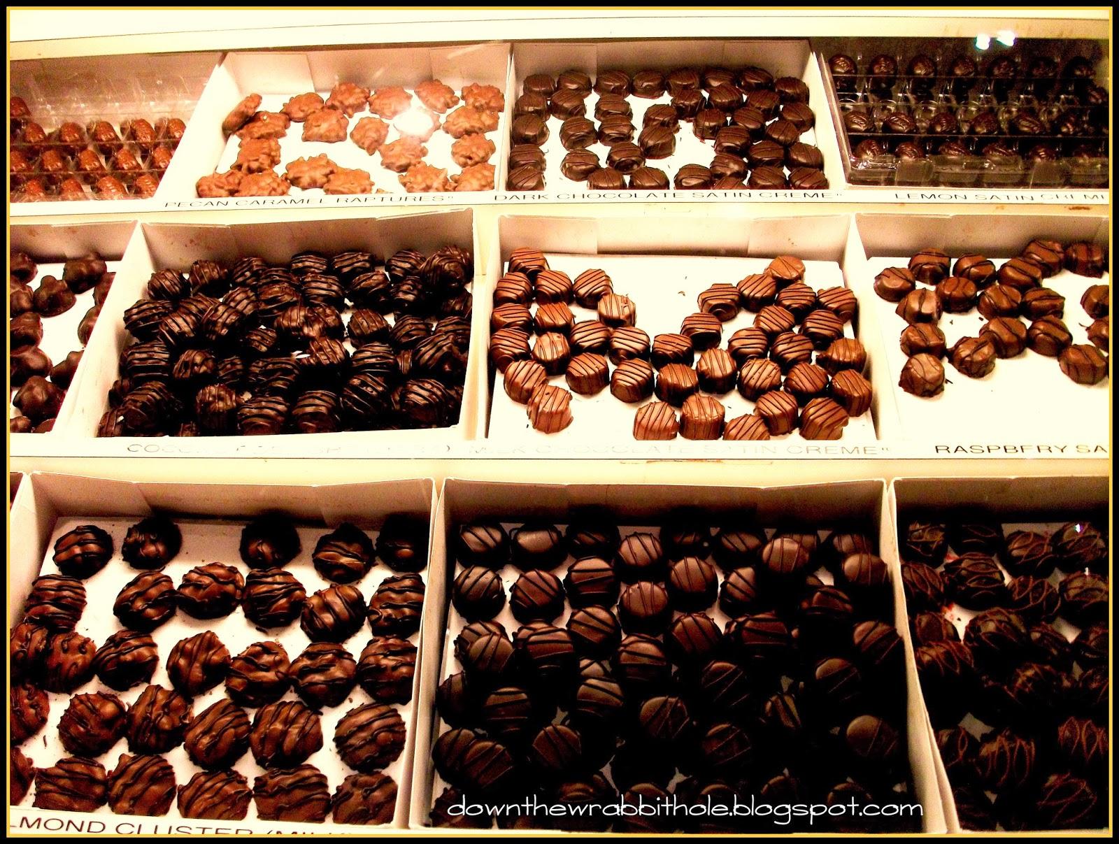 Visit a Cactus Garden in a Chocolate Factory