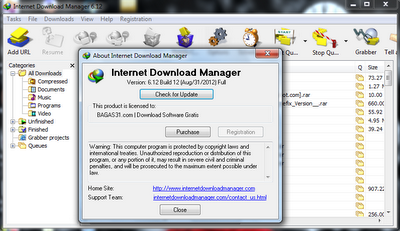 Internet Download Manager 6.12 Build 12 Full Crack 2