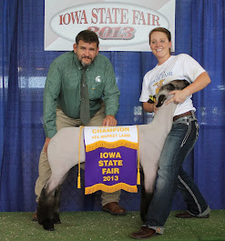 Grand Champion Market Lamb 2013 Iowa State Fair FFA