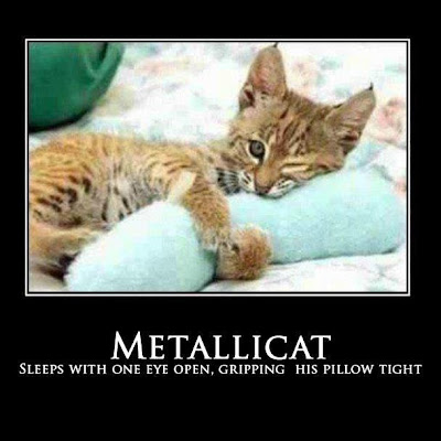 Metallicat sleeps with one eye open, gripping his pillow tight.
