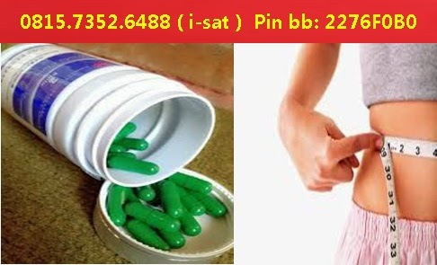 Biolo Obat Diet Herbal