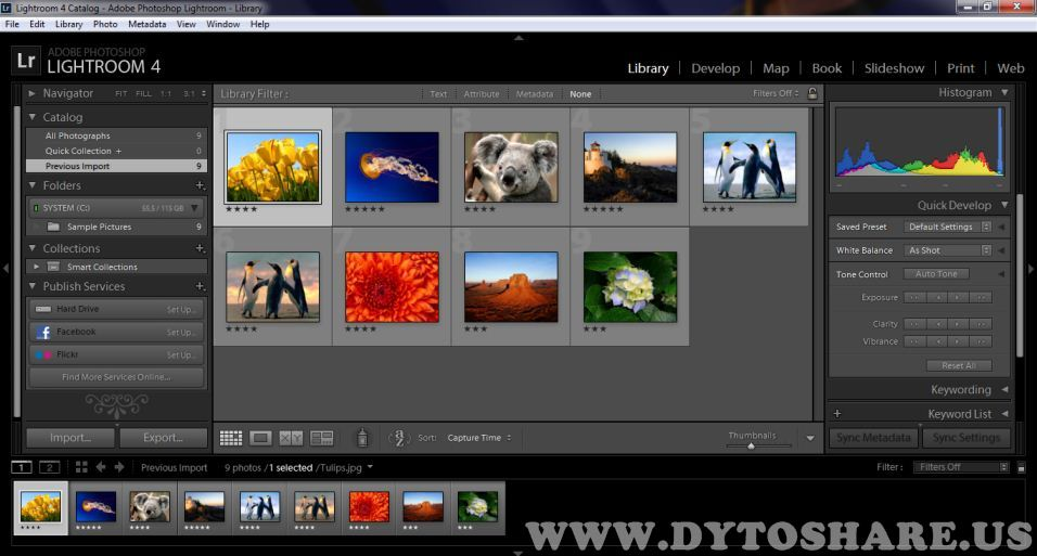 Adobe выпустила фоторедактор Photoshop Lightroom 4.