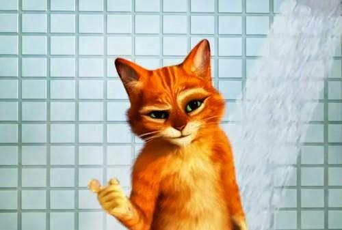 Le chat potté en francais