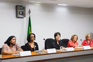 CDHSPDM - Subcomissão Permanente dos Direitos da Mulher  Foto: Arthur Monteiro/Agência Senado (08/03/2012)