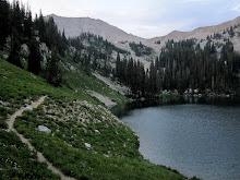 White Baldy Peak July 2012