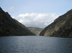 Ribeira Sacra. El Sil.