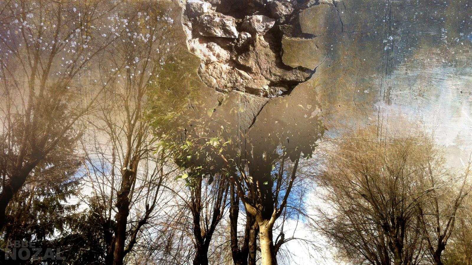 invierno desigual, 2014 Abbé Nozal