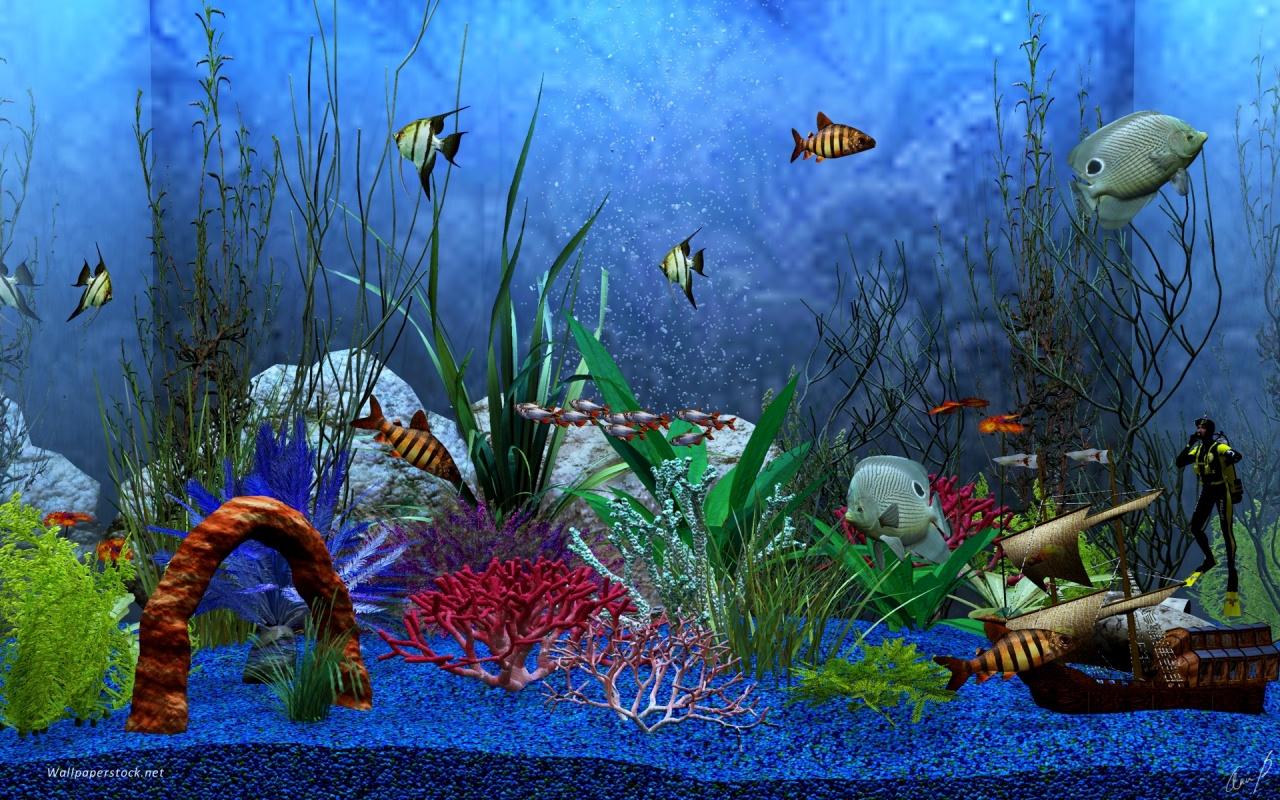 Free Download Aquarium Deskop 3 Full Wong Sewo Anggi Andiki