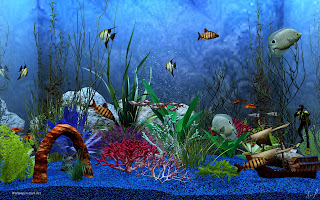Free Download Aquarium Deskop 3 Full Version