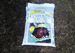 LI Compost Composted Manure in soil Before and After