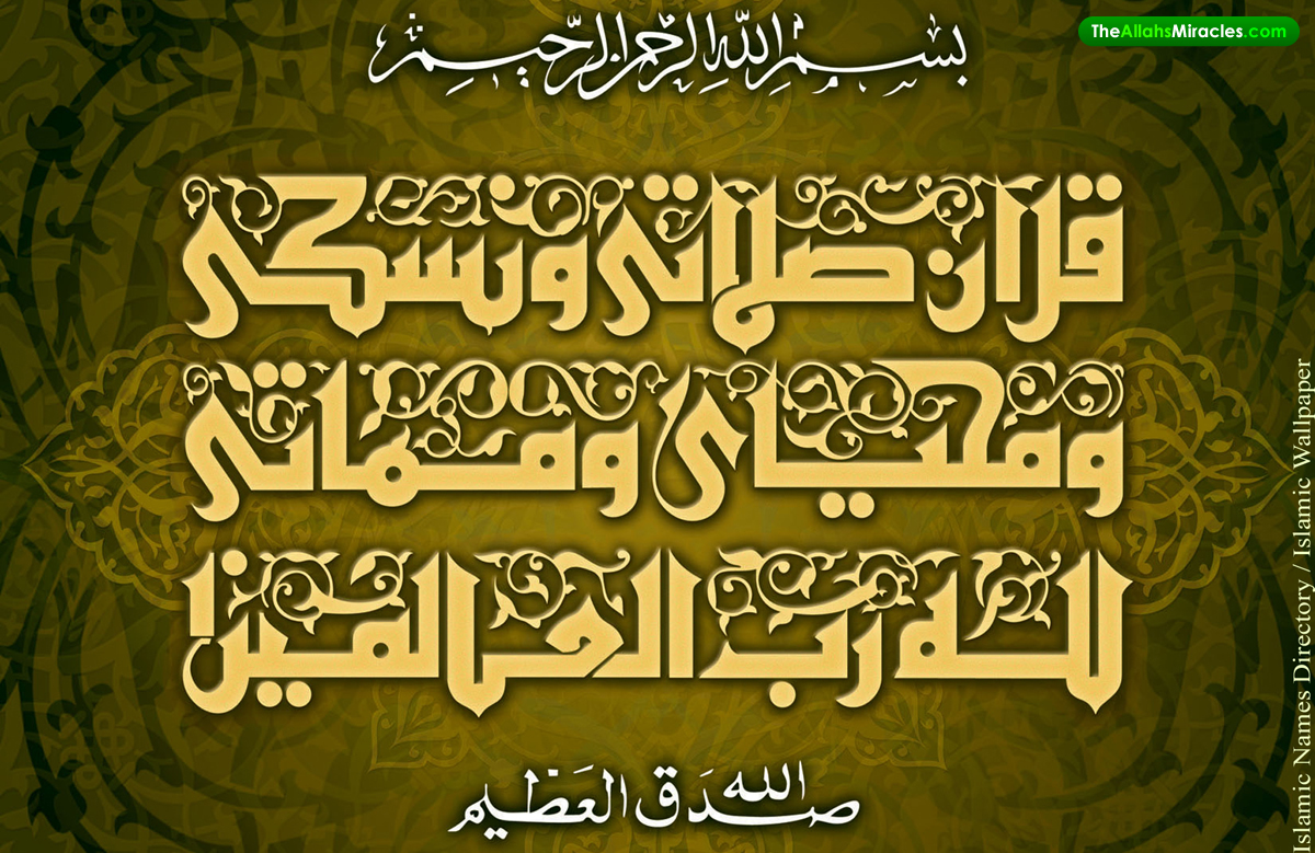 Islamic picture islami picture islami walpaper free Allah calligraphy wallpaper
