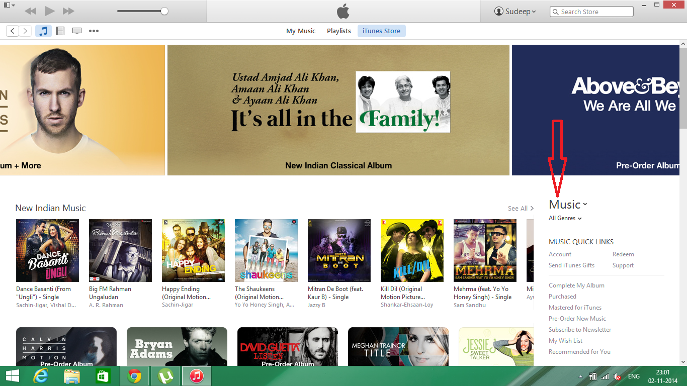 music section in itunes