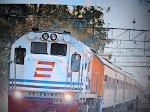 Pengiriman Ayam via Jalur Darat   untuk Wilayah Jawa  Menggunakan Jasa angkutan Kereta Api