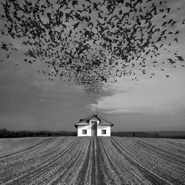 Photo Manipulations by Dariusz Klimczak10