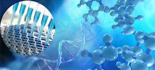 Principais compostos estudados pela Bioquímica