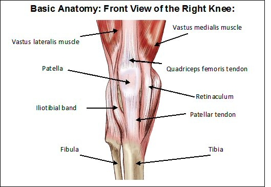 Anterior Knee Pain Syndrome | Central Texas Orthopedics Patient Resource