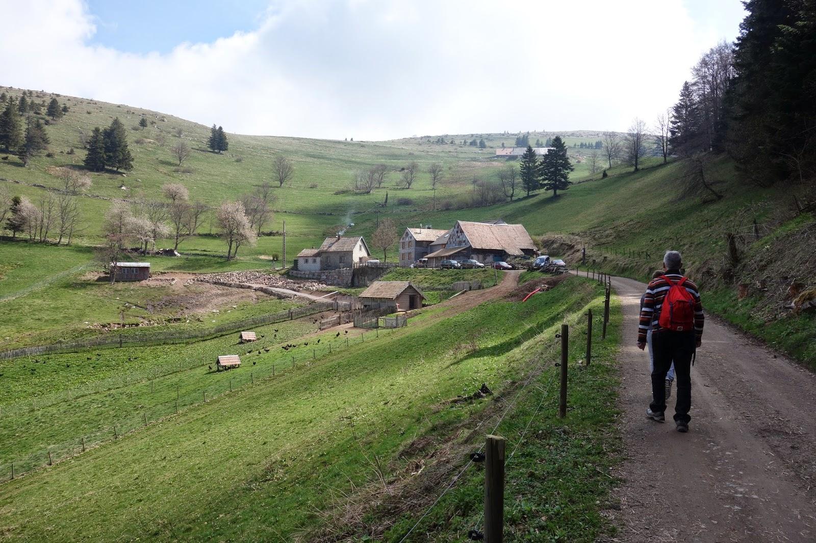 Дорога к ферме-3