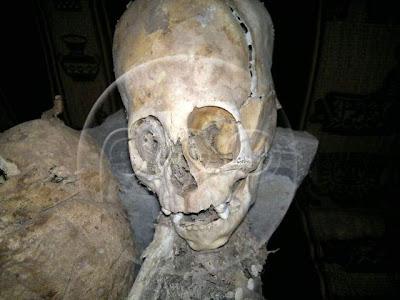 craneo de momia extraterrestre en cusco peru 2011