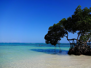 Punta+Cana+Dominican+Republic+(2).JPG