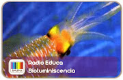 http://www.radioeduca.org/2012/10/bioluminiscencia.html
