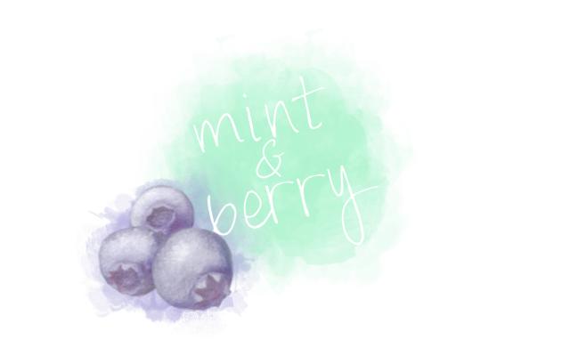 Blogvorstellung bei mint & berry