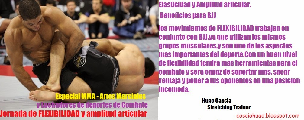 TrainingVital: MMA Workout - Entrenamiento MMA Strength - Tener un ...