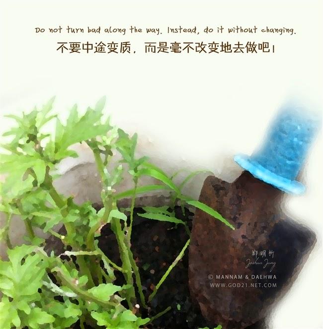 郑明析,摄理教会,月明洞,变质,改变,行动,Joshua Jung, Providence, Wolmyeung Dong, change, action