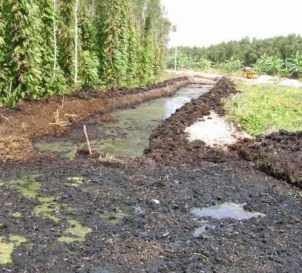 Soil classification based on composition for Soil grading