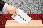 Ce pot face ca referendumul cerut de 3 milioane de români să aibă loc?