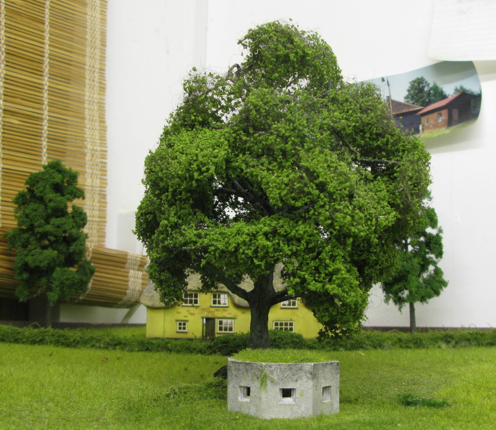 The_tree.jpg