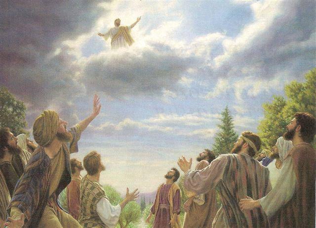 SEGUNDA  LLEGADA DE  JESUS