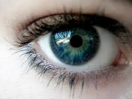 7 Fakta Mengenai Mata