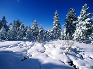 Beautifull Wallpaper ( Winter Season Photos ) Gallery Free Download