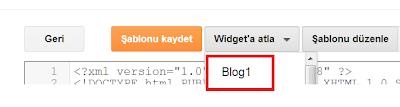 Blogger Gönderileri Ana Sayfada Göstermeme