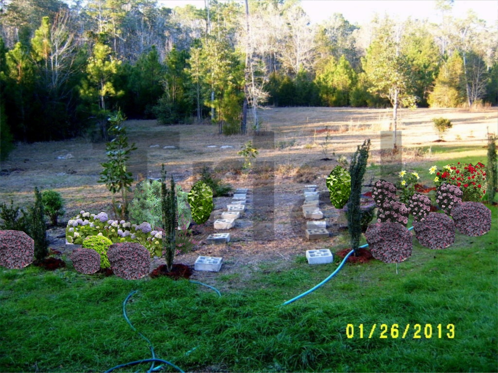 alabama rose and flower garden from a non green thumb feeling