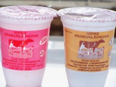 susu dari sapi warga pangalengan
