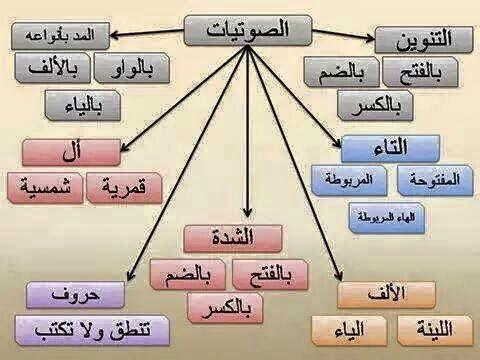 الصوتيات في العربية