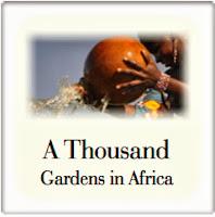 1000 Gardens in Africa