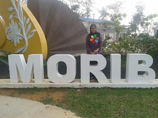 Gold Coast Morib