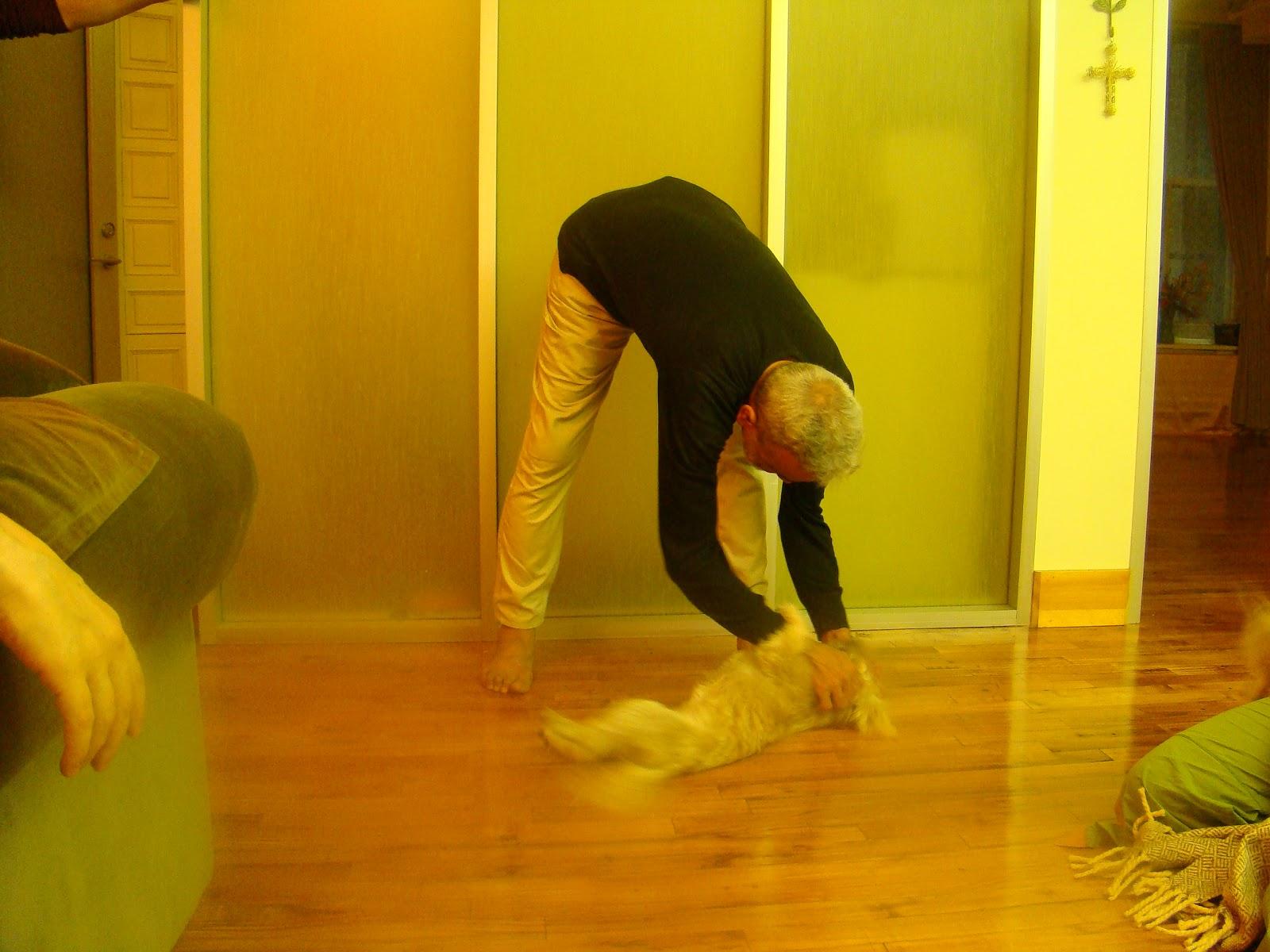 yoga teacher training manual template