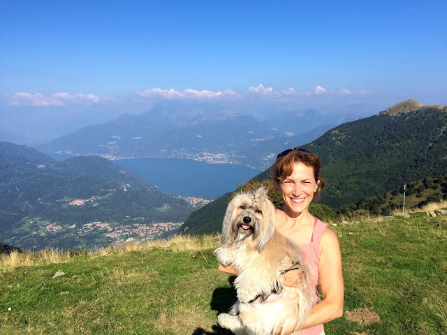 view from Monte di Tremezzo dog friendly hiking near Lake Como