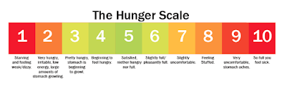 Revolusi Ilmiah - The Hunger Scale
