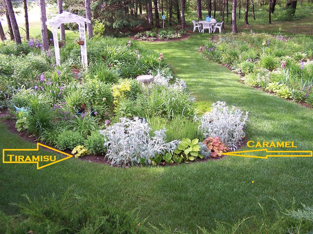 Perennial Passion: Miscellaneous Garden Musings for Cottage Flora ...
