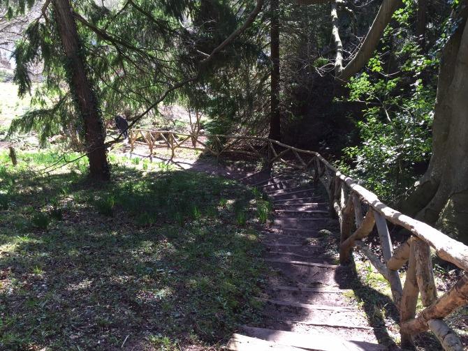 Short cut path