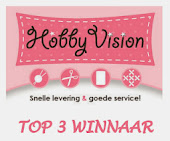 1e plaats TOP 3 #20 Hobbyvision