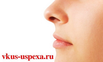 Определить черты характера по носу, Психология форма и длина носа