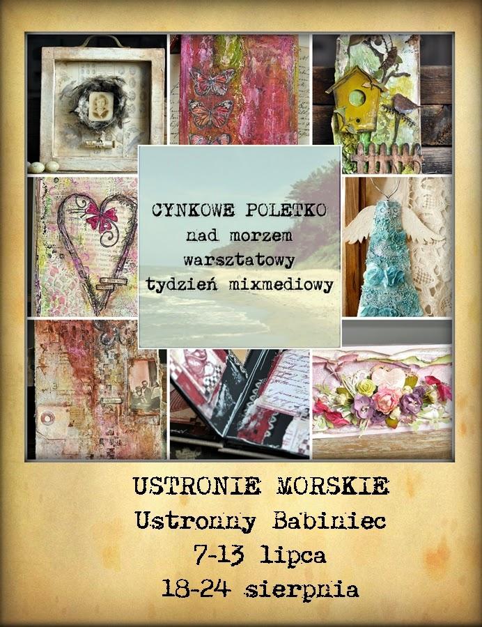 http://ustronnybabiniec.pl/?cynkowe-poletko-mix-mediowy-tydzien-nad-morzem-%21%21%21-jedyne-1200-00%2C63