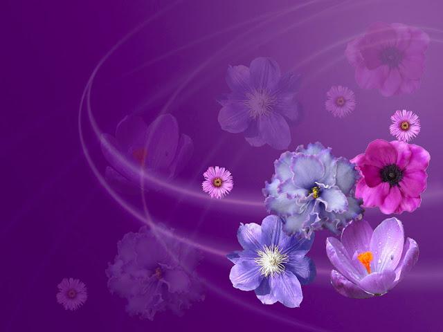 çiçek masaüstü arka plan resmi